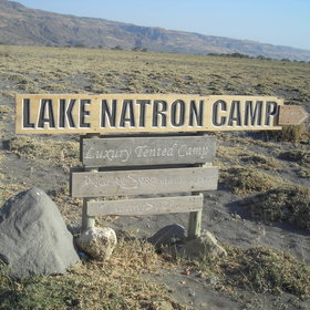 Ngare Sero Lake Natron Camp