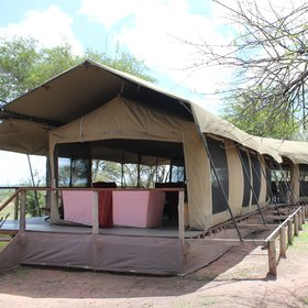 The tents are all raised on substantial wooden decks.
