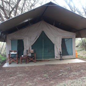 Twelve spacious tents are located under shady umbrella acacia trees.