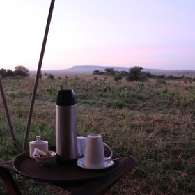 Enjoy a wake up call at your tent each morning...