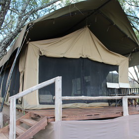 The eight spacious tents are raised up, with private verandas.