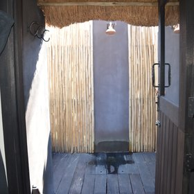 A door off the bathroom leads to an outside shower screened with reeds for privacy.