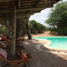 Jongomero Camp is one of southern Tanzania's best appointed luxury camps…