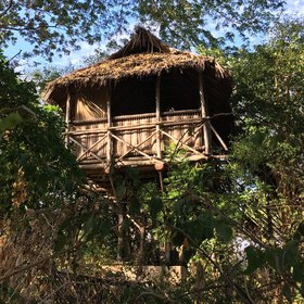 There's nothing like a tree-house to excite the adventurous traveller.