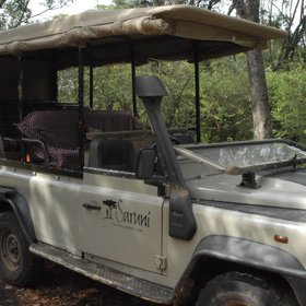 Activities mainly focus on game drives in the comfortable 4X4's.
