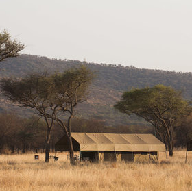 Ndutu Kati Kati is a seasonal tented camp in the southern Serengeti.