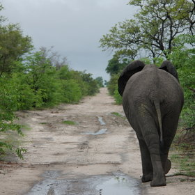 ...and game drives into the Mudumu National Park.