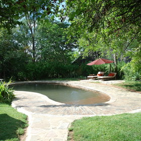 Outside in a lush green vegetation is a swimming pool...