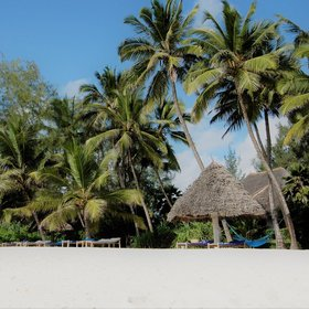Pongwe Beach Hotel sits on an idyllic white sand beach.