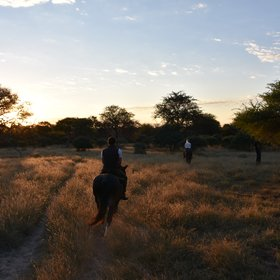 Activities include the sunset horseback safaris...