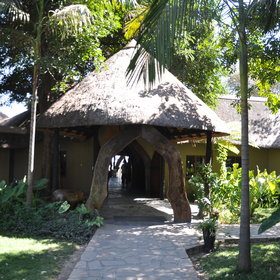 Namushasha Lodge is situated along the bank of the Kwando River.