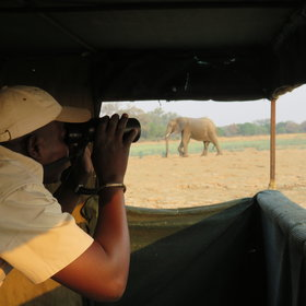Activities include day and night game drives in open 4x4 safari vehicles...