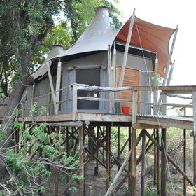 <b>Kwetsani Camp</b> has just five canvas 'tree house' style chalets...