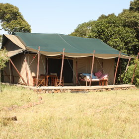 The tents at Offbeat Mara are large, traditionally styled, canvas tents…