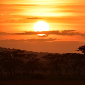 At the end of the day enjoy a spectacular sunset over the Serengeti.