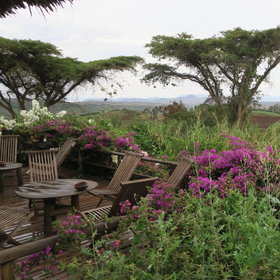 Rhotia Valley Tented lodge sits up on a hill...