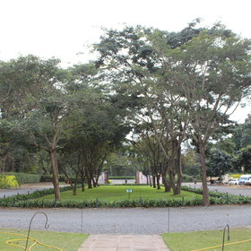 The grounds are exensive - manicured lawns sit side by side with the coffee plantations.