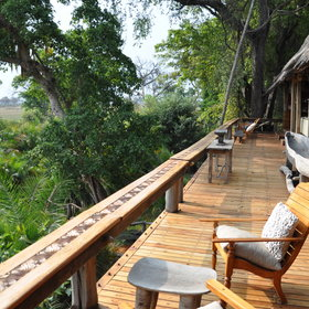 Jao Camp is one of the Okavango's smartest camps; it has a very tropical, luxuriant feel.