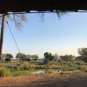 Chula Island Camp sits in a natal mahogany grove on the small Katengahumba Island, on the Zambezi River.