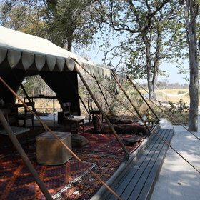 Selinda Explorers Camp