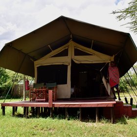 Porini Mara is a comfortable, eco-friendly, relatively simple camp with strong community ties.