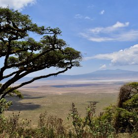 Explore the remote northern rim of the Ngorongoro Crater on a two-day hike.