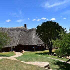 Borana lodge is charming, with well manicured gardens and a homely feel.