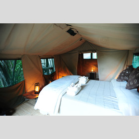 ...mesh windows with canvas covers ensure the tents never get too hot or too cold