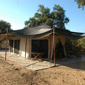Kigelia Camp is relatively new in Ruaha...