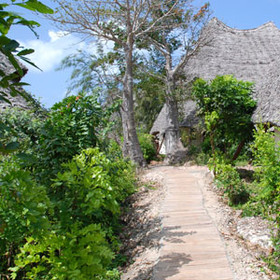 The Baobab and Sea View Villas...
