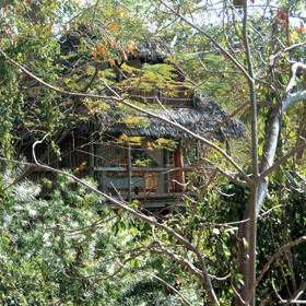 Mbili tree-house is the biggest tree-house at Chole Mjini ...
