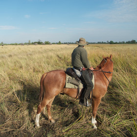 Africa has some great horseback safaris...