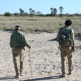 Walking in Botswana
