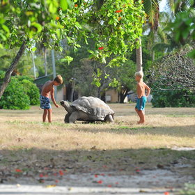 Family holidays in Seychelles