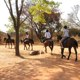 Riding holidays in Zambia