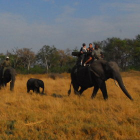 Riding holidays in Botswana