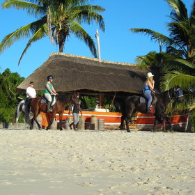 Riding holidays in Mozambique